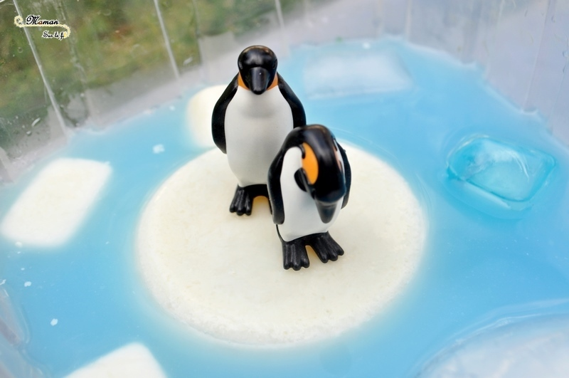 Actiivté enfants - invitation à jouer - plateau et bac sensoriel - Banquise avec glaçons de lait blancs et bleus - eau bleue - Pingouins, phoque, glace et neige - mslf