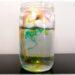 Activité et expérience créative enfants - créer une pluie multicolore dans un verre - 2 techniques - Sciences - Pluie multicolore, météo et automne - maternelle et élémentaire - Mousse à raser et huile - mslf