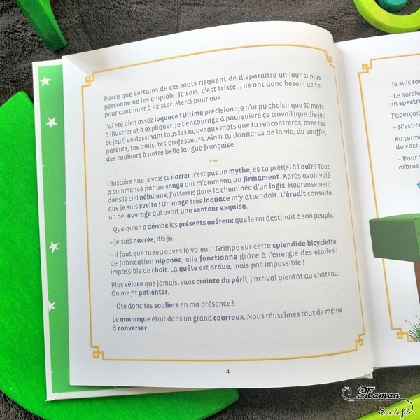 Test et avis livre enfants - Un petit dessin pour parler comme les grands et pour ne plus prendre un dromadaire pour un chameau - Sandrine Campese - Editions le robert - Travail du vocabulaire, du lexique soutenu grâce aux dessins et illustrations - Livre, documentaire - littérature enfant - mslf
