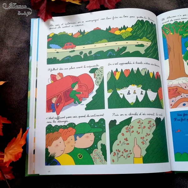 Livre enfants - Au bois aux éditions fourmis rouges - Album et bande dessinée - Documentaire forêt et imaginaire - au fil des saisons - test et avis - mslf