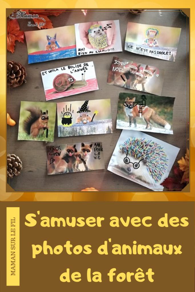 Activité créative enfants - Décorer et dessiner sur des photos d'animaux de la forêt - Travailler le graphisme et le dessin en s'amusant - omagination et humour - Hérissons, escargots, renards, écureuils - Arts visuels - maternelle et élémentaire - mslf