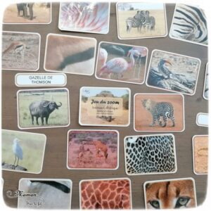 Activité enfants - 2 jeux à imprimer DIY sur les animaux de la savane, Afrique et désert - Jeu du zoom et Repère les couleurs - Travail de l'observation, de la discrimination visuelle, lexique et vocabulaire - A télécharger ou jeu imprimé - Boutique en ligne - Jeux pédagogique - Documents éducatifs numériques - Afrique et Kenya - Découverte d'un pays - Animaux de la savane - Espace et géographie - arts visuels et atelier autocorrectif maternelle et Cycle 1 et 2 - Eté - mslf