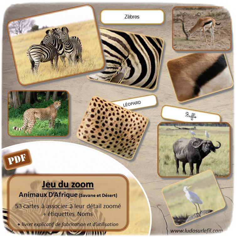 Jeu du zoom - Animaux Afrique - Savane et Désert - jeu à imprimer ou imprimé - atelier autocorrectif maternelle ou cycle 2 - vocabulaire et lexique - découverte géographie - lslf